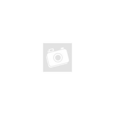 Pangea Magnetic Gecko Feeding Ledge (nagy)